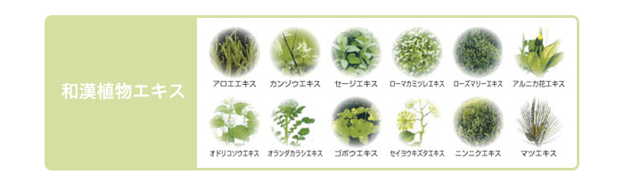 和漢植物エキス